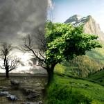 Ecologia_by_Inu_Jim